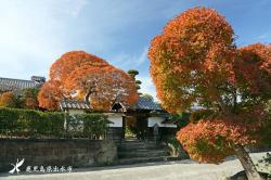Fumoto in late autumn 2